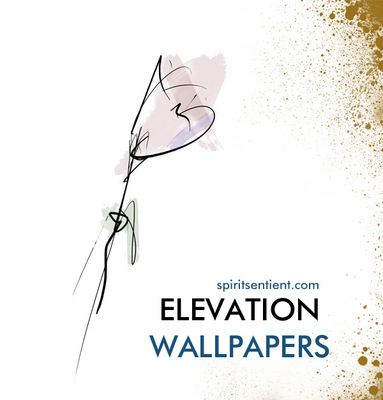 Product picture Elevation Motivational Wallpapers